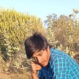 Vikashsogw from Jaipur   Man   20 years old   Aquarius